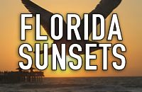 FLORIDA SUNSETS AND SUNRISES / Florida is a pristine and perfectly designed warm and tropical paradise. It is an oasis full of breathtaking beautiful sunrises and sunsets that are sure to exceed any and all of your expectations. THIS IS A SPAM-FREE ZONE! PLEASE STAY ON CONTENT AND BE COURTEOUS. IF YOU WOULD LIKE TO JOIN THIS BOARD, PLEASE LEAVE A COMMENT ON A PIN. #florida #sunsets http://www.waterfrontpropertiesadmiralscove.com/