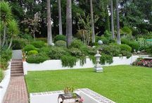 Landscaping / Landscaping Tips and Ideas