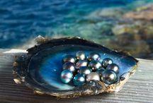 June birthstones: Pearl, moonstone and alexandrite