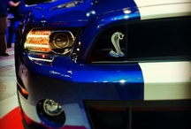 Mustang / The Great American Muscle Car.