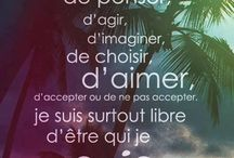 Citations/Phrases
