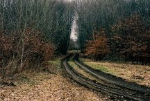 trails / by psyche q