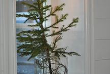 Advent o jul