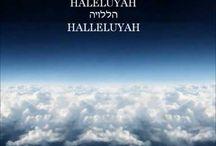 HalleluYAH(PraiseYAH) Shiru Lamelech! Ahmein