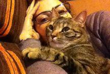 Pizzica&Nyura / My lovely cats