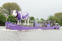 Milka #muhboot / Milka #muhboot on tour!