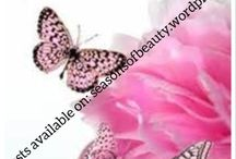 Seasons of beauty blog / Blogging