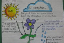 Anchor charts for natural science grade 6