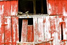 Barns / by Dodie Presley