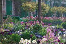 Monet'n puutarha