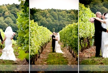 Weddings in Ontario Wine Country