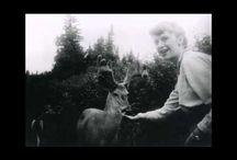 SYLVIA PLATH - VIDEO POETRY - /  Video tribute to Sylvia Plath -