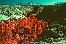 aerochrome infrared