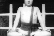 Karmapa 16