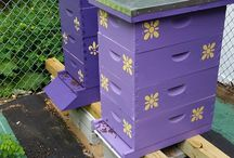 Parris House Bees - Tovookan's Honey