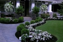 Front paths