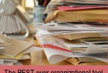 Organization / by Rosamunda Carter
