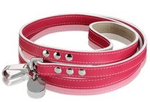 Luxury Dog Leashes / These magnificent luxury leashes are from one of the finest collections of companion leashes in the world. These high-end leashes use only ecological tanned leathers from selected traditional European tanneries. Each leash is meticulously hand crafted in Switzerland with endless passion and each piece has its very own individual character. Please visit our PTPA Boutique on our website for more details and matching collars: ModernPuppies.com