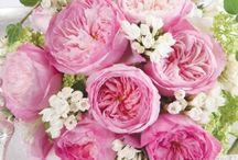 decoracioni con fiori
