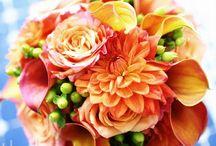 // les fleurs