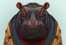 Hippos & Rhinos ~ Art