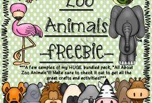 Pre-K Animals