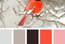 web disign color