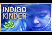Indigo Kinder