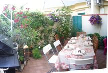 My backyard / My few, irreplaceable, square meters of backyard!