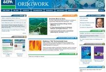 TM Design Websites