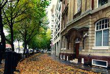 Autumn in Bristol / Bristol at its seasonal best - Autumn