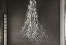 Музей корни деревьев