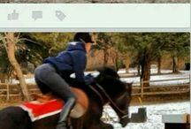 ponyspelen ponyclub