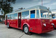 MHD autobus