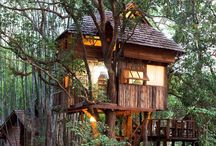 Treehouses / Live out your childhood fantasies.