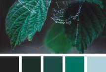 χρωμ.πρασσινα