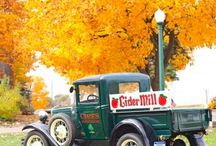 Seasons in Holland, MI! / by Holland Michigan