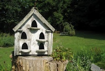 Purposeful home / Homes for birds. Homes for animals. Homes for tools. Homes wee small. Homes for the imagination. / by D Lee Stanley