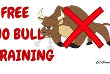 No Bull Marketing