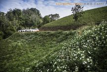 Landscape 4x4 OVERLAND TEAM / #4x4 #4wd #4door #4x4accessories #racktray #rollbar #4x4overland #overland #crosscountry #offroad #fourwheels #overlandbullbar #overlandtouring #journey #adventure #nature #sahara #offroad #overlandteam #rockyseries #k2bullbar #bullbar #camping #travel #Mitsubishi #triton #vacation #trailfinder #bumper #accessoriescars  facebook/overlandteam