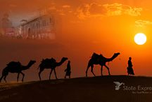 Luxury package tours in India
