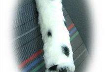 dalmatian / Dalmatian themed items and Dalmatians :)