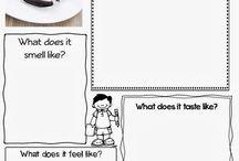 Descriptive writing Literacy Reception/Year 1