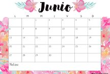 Organización Mensual - Semanal