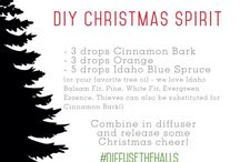 EO Diffuser Blends: Winter/Christmas
