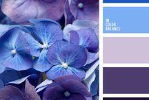 Цвет: Синее