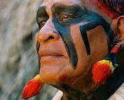 índio brasileiro / índios do Brasil