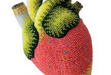 Heart/Coeur