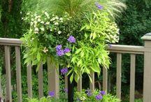Container gardening / Container arrangements
