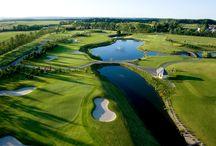 Club di Golf e defibrillatori /   Secondo uno studio americano, dei 40 infarti che sono successi in campo da golf in Michigan dal 2010 al 2012, solo il 30% dei pazienti è arrivato in ospedale ancora vivo: un numero che potrebbe essere più alto se più golf club avessero e usassero defibrillatori semiautomatici (DAE).